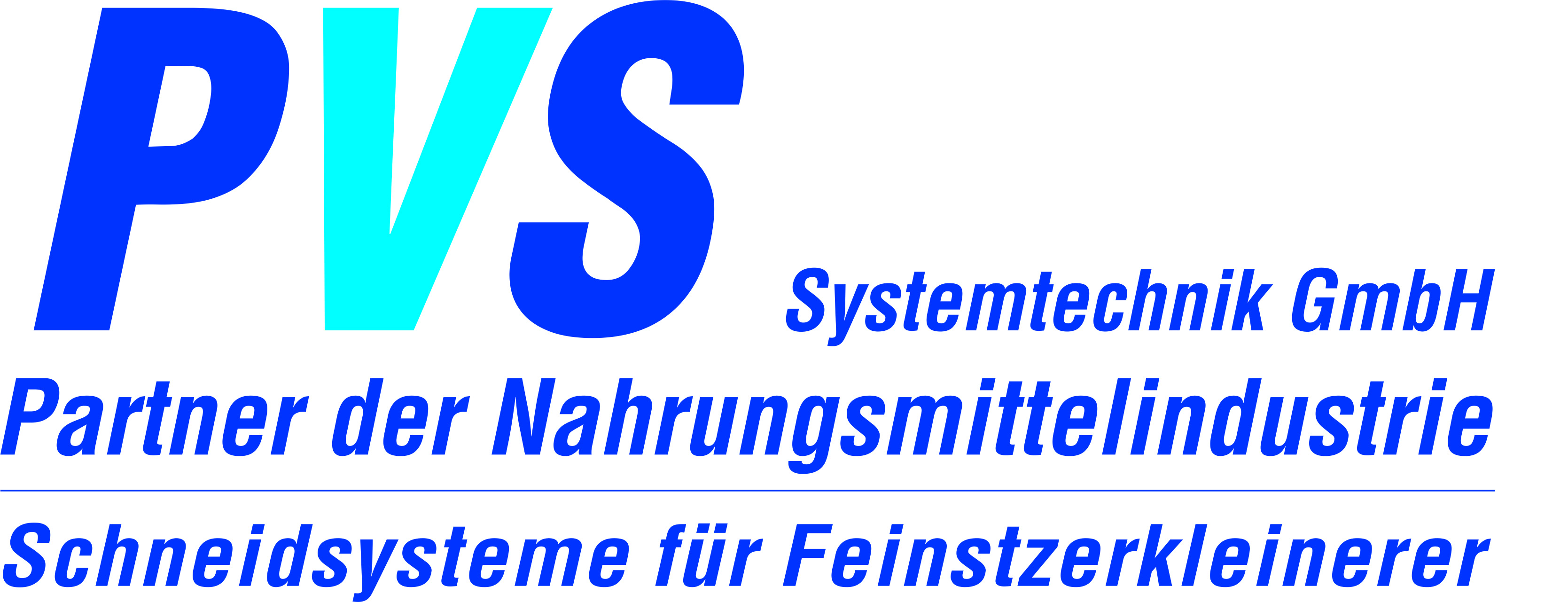 PVS Systemtechnik GmbH